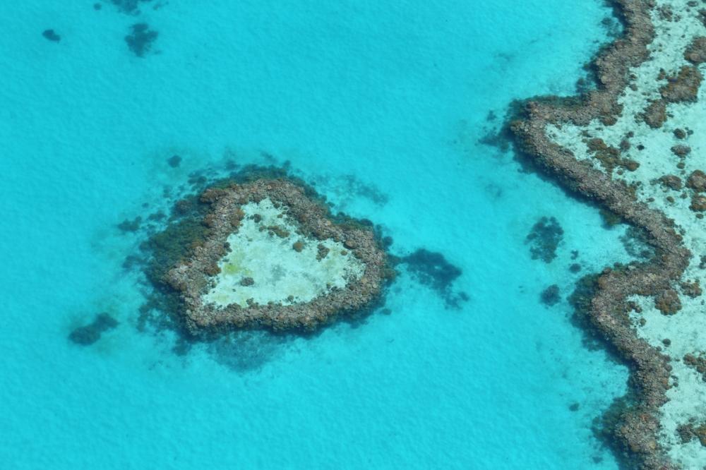 Hamilton Island, Great Barrier Reef, Travel, Beach, Summer, Queensland, Australia, Heart Reef